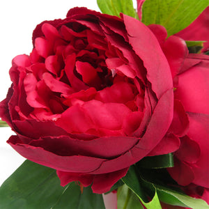 Redl Peonies Bunch