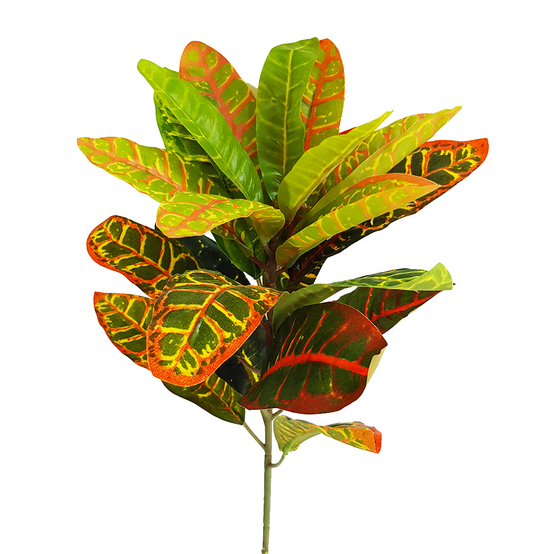 Tropical Plants - Red Yellow Greenery Plant