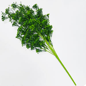 Seedy Bushy Plant - Green