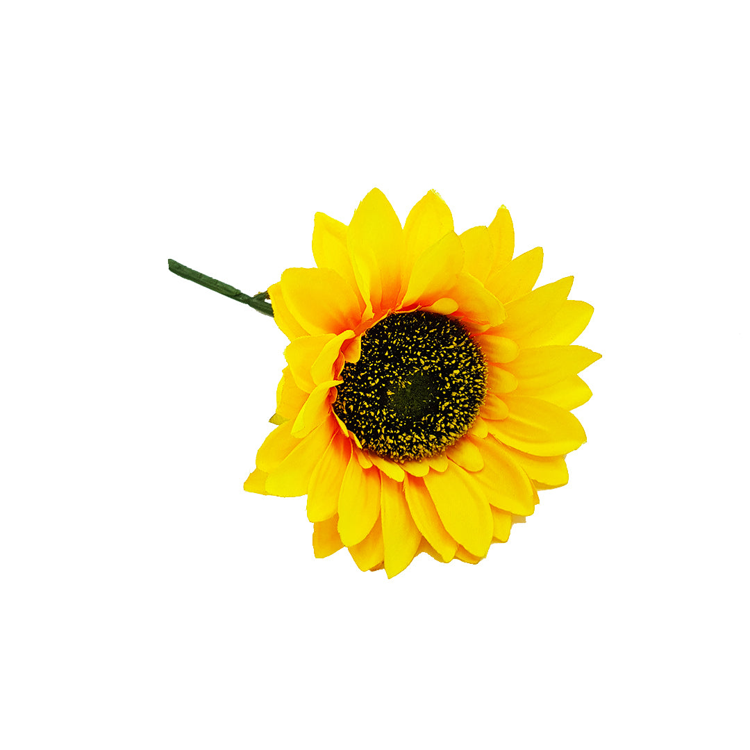 Single Sunflower Stalk