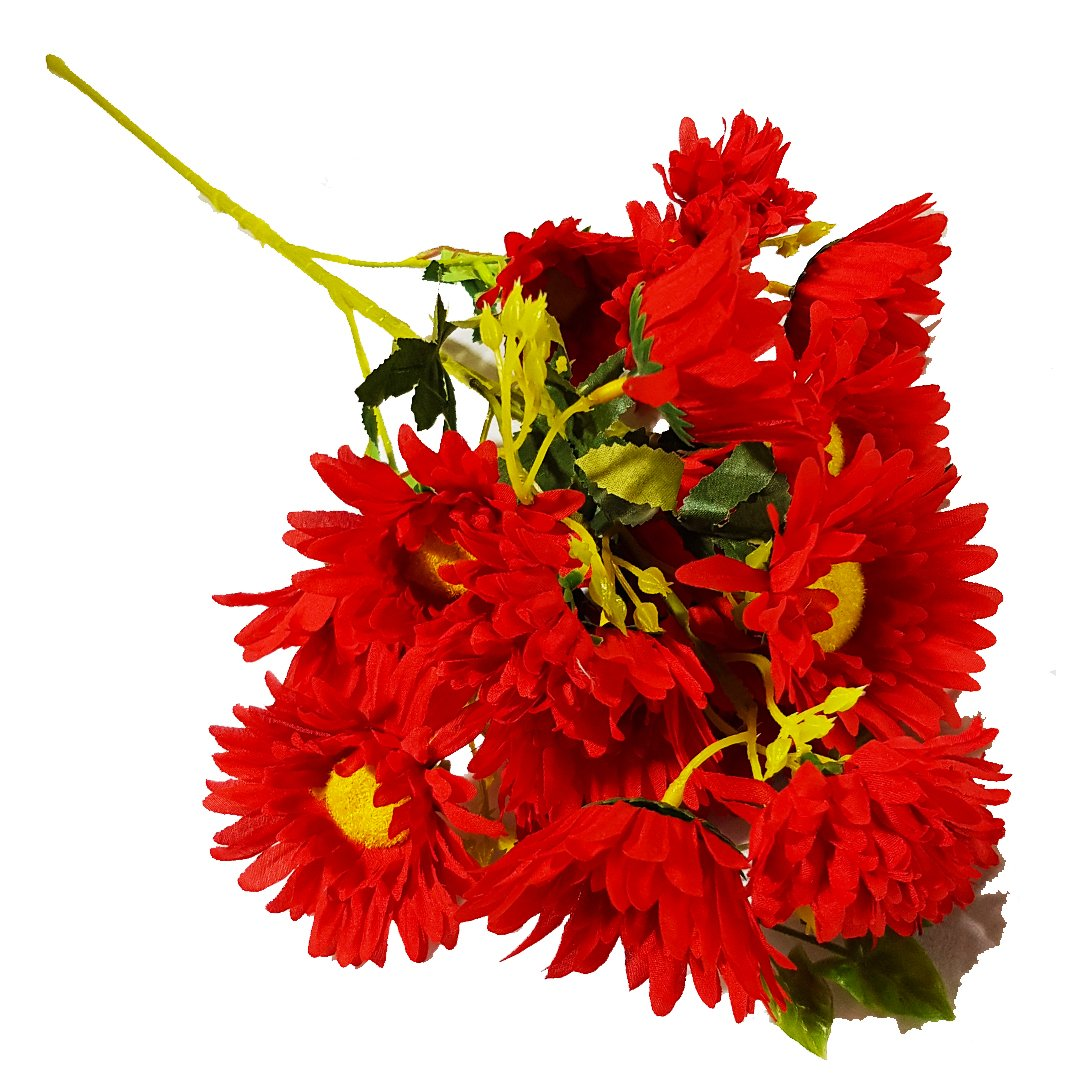 Long Red Sunflowe For Long Vase Red Acacia Lagos