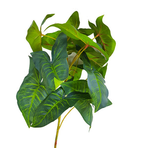 Tropical Plants - Tropical Green Plant