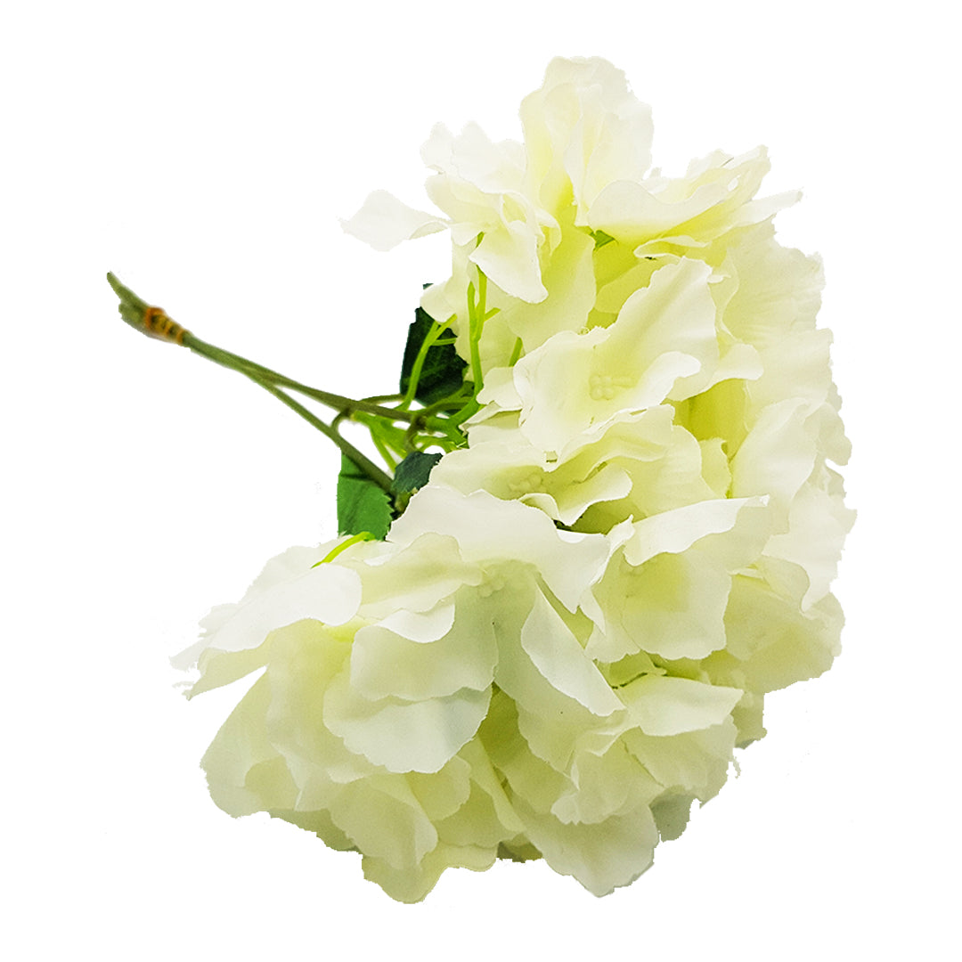 Hydrangeas Flowers Bunch - 3 Heads - White