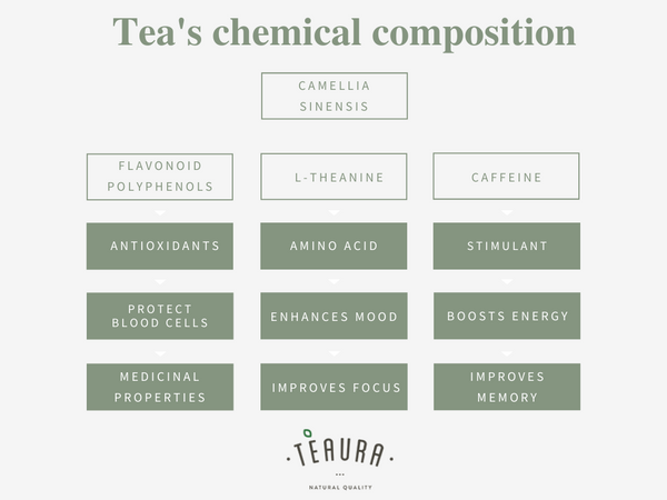 Chemical composition of tea: polyphenols, l-theanine, caffeine