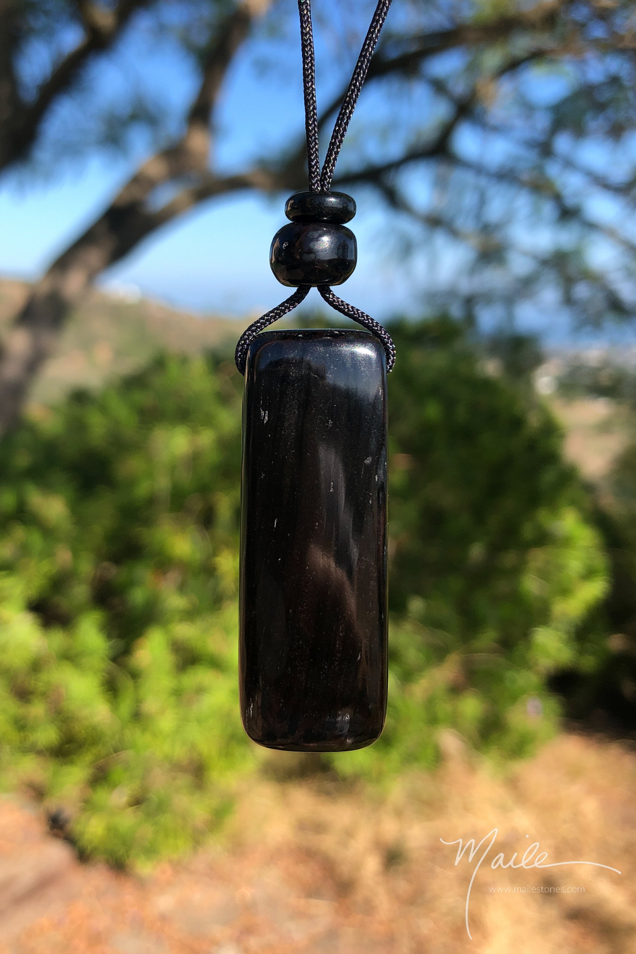 Black Petrified Palm Wood Pendant