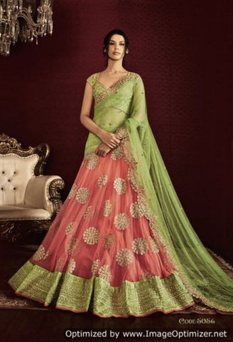Light Green Mono Net Lehenga WIth Wave Border