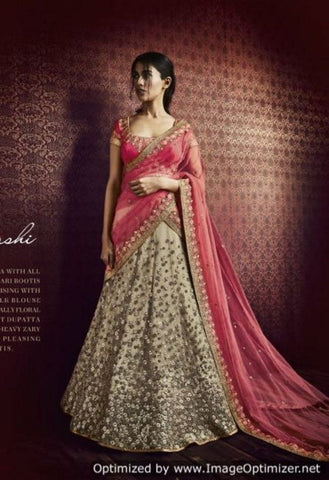 Beige Net Lehenga With All over Zari Bootis Embroidery