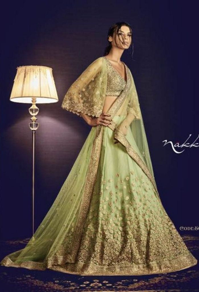 Skirt in Pista Net Lehenga With All over Embroidery