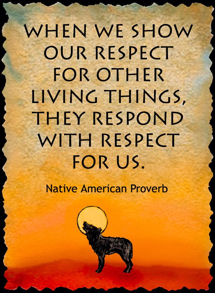 When We Show Our Respect - Native American #173