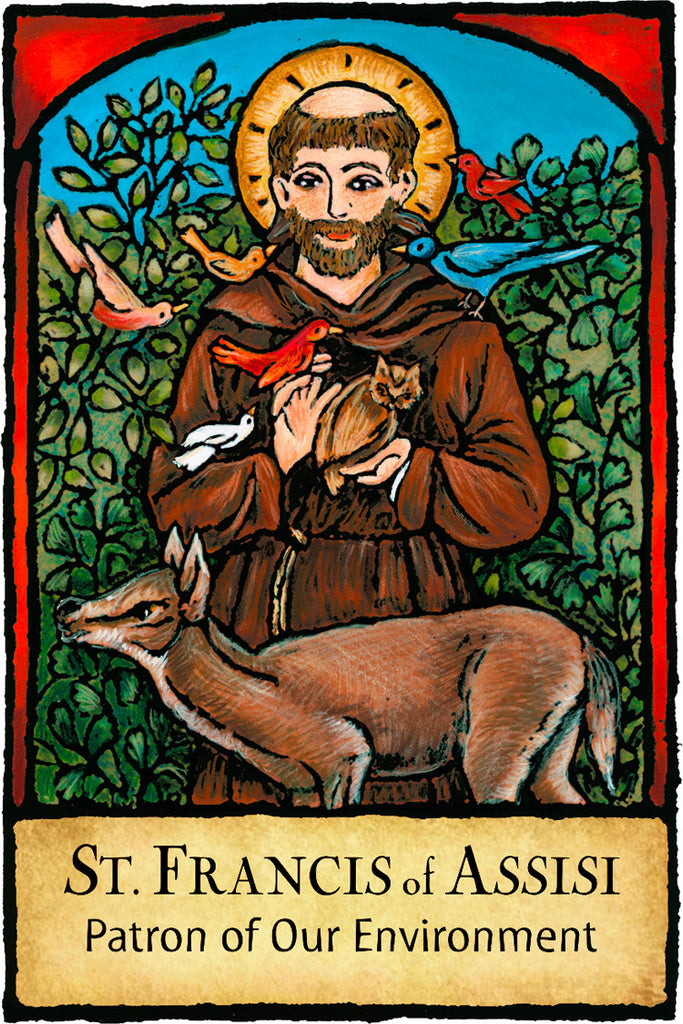 St. Francis of Assisi - Patron Saints #437