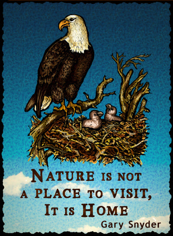 Nature is Not a Place to - Nature #930
