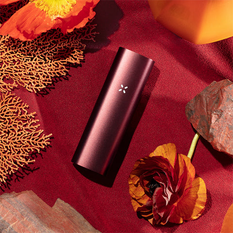 Pax 3 Basic Kit Burgundy