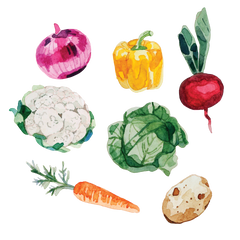 Artist Series Stickers: Vegetables (STC-516)