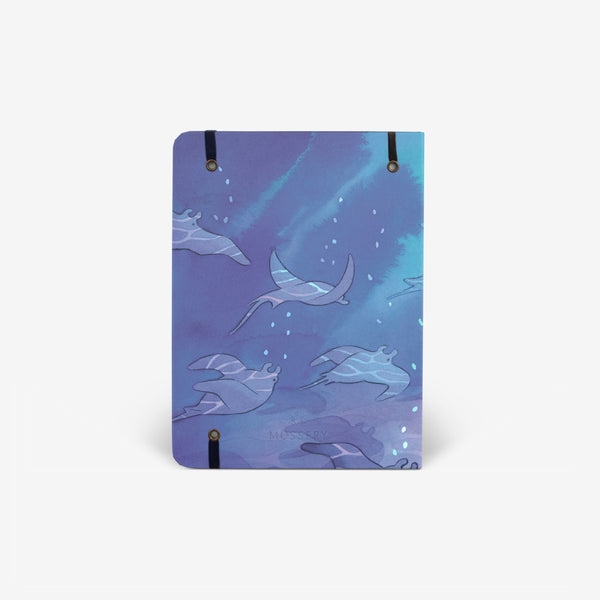 Shallows 2021 Planner