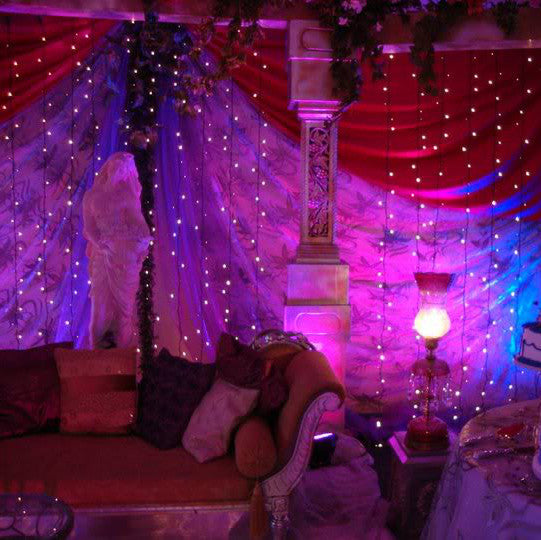 LED Lighted Strands Curtain With Cool White Lights    12 Feet Long