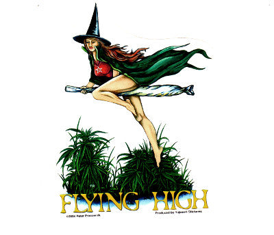 Peter Pracownik Witch Flying High Broomstick Sticker