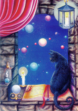 Denise Satter An Open Book Black Cat Greeting Card