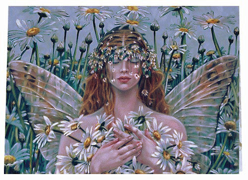 Sheila Wolk Bliss Fairy Greeting Card