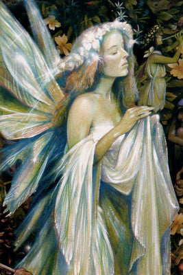 Brian Froud Gwenhwfar Fairy Note Card