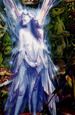 Brian Froud The Faery Who Was Kissed by the Pixies Fairy Note Card