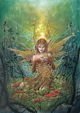 Cobweb Fairy Card by Briar