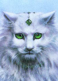 Susan Dawe Emerald Eyes Cat Greeting Card