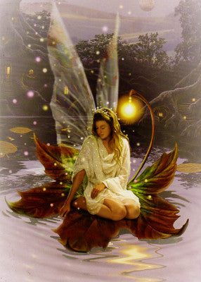 Fairy on Leaf Greeting Card
