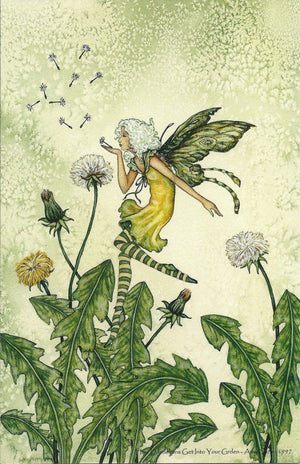 Amy Brown How Dandelions Grow in your Garden Fairy Postcard