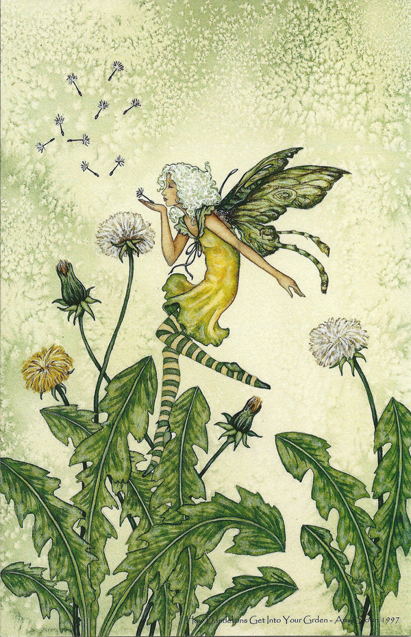 Amy Brown How Dandelions Grow in your Garden Fairy Print -- 11 x 17
