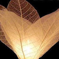 Natural Flower Skeleton Leaves String Lights -- 9 Feet in Length