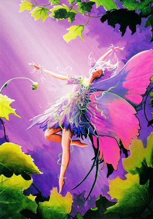 Marianne Plumridge Lets Go Fairy Greeting Card