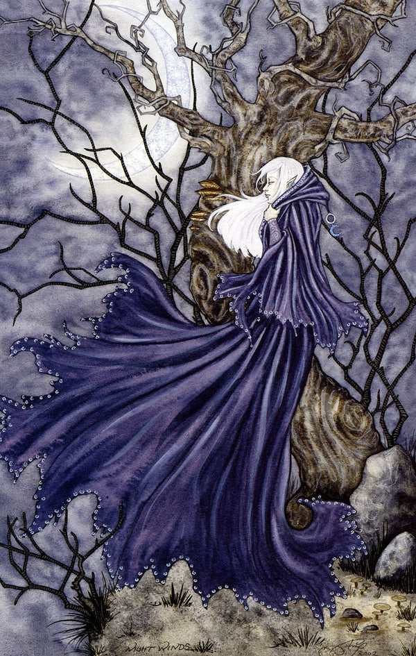 Amy Brown Night Winds Fairy Print 11x17