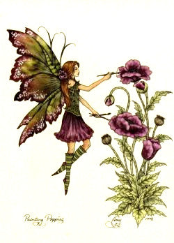 Amy Brown Painting Poppies Fairy Postcard