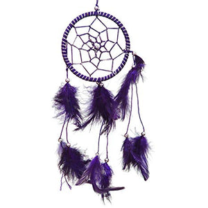 Purple Dreamcatcher With Feathers
