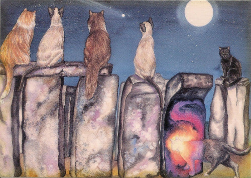 Denise Satter The Gateway Cat Greeting Card