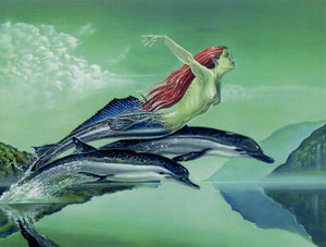 David Van Gough Tranquility Mermaid Dolphin Print