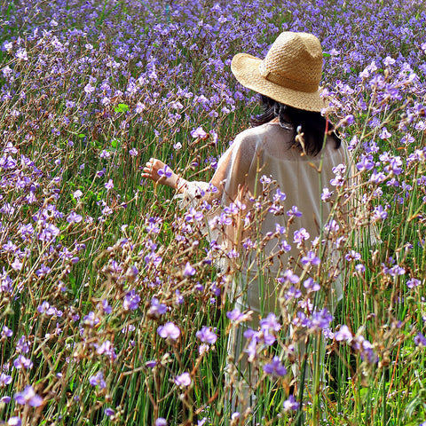 An image of a girl in a field of flowers.