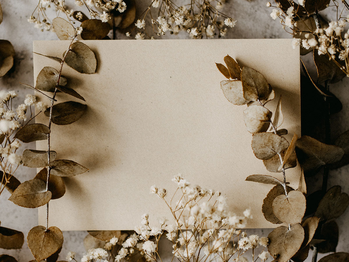 An invitation surrounded by dried plants and flowers.