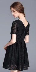 Short fit and flare Lace Dress