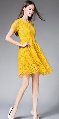 Short Sleeve Midi lace Dress