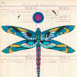 Dragonfly Ledger Art Evans Flammond