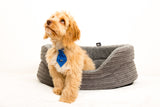 Regent Collection Round Cord Dog Bed