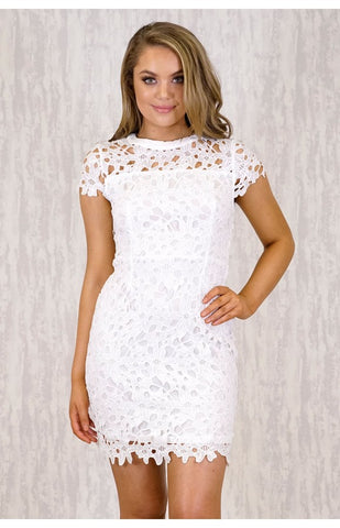 Style State 'Heavy Lace Embroidery' Dress