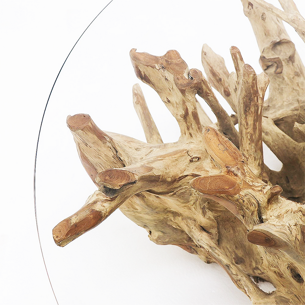 SOUK COLLECTIVE | Crusoe Round Teak Root Coffee Table