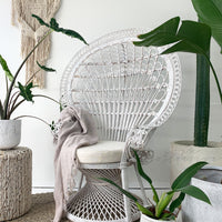 SOUK COLLECTIVE | Peacock Chair White