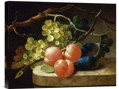 Grapes on a Vine, Peaches and Plums on a Ledge