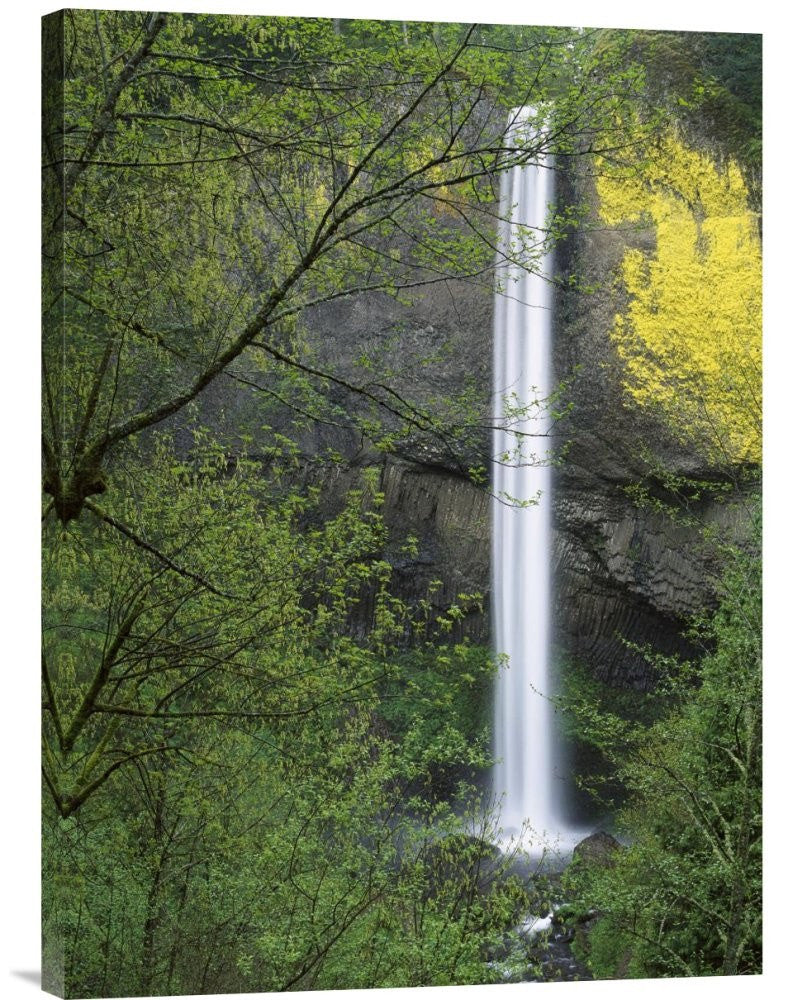 Latourell Falls, Columbia River Gorge Near Portland, Oregon