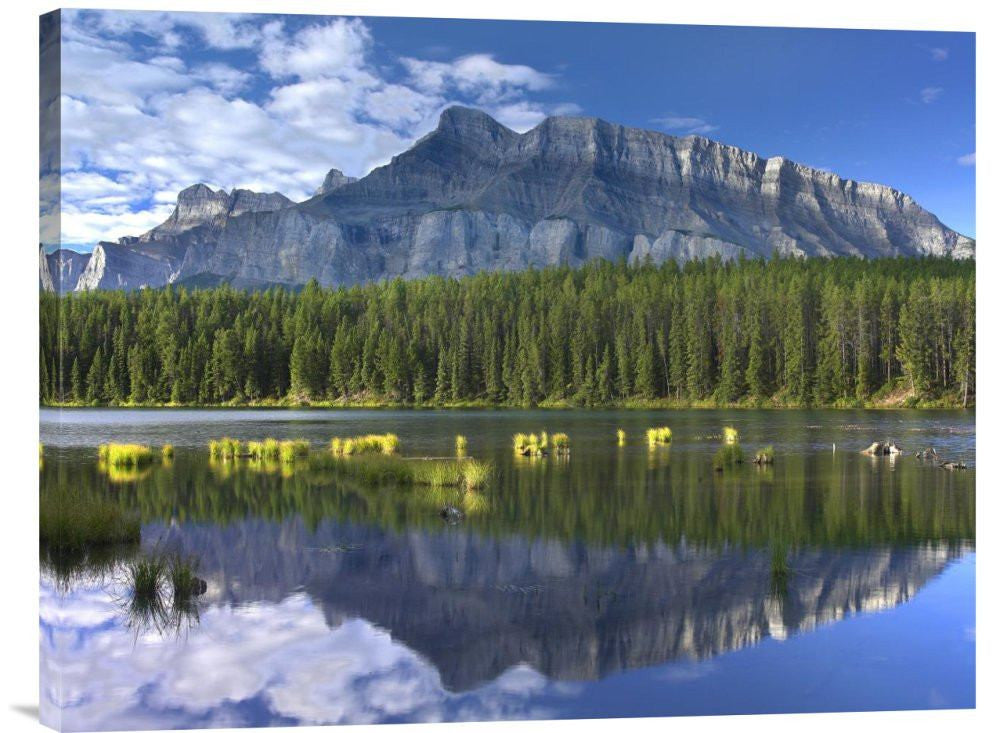 Mount Rundle and Boreal Forest