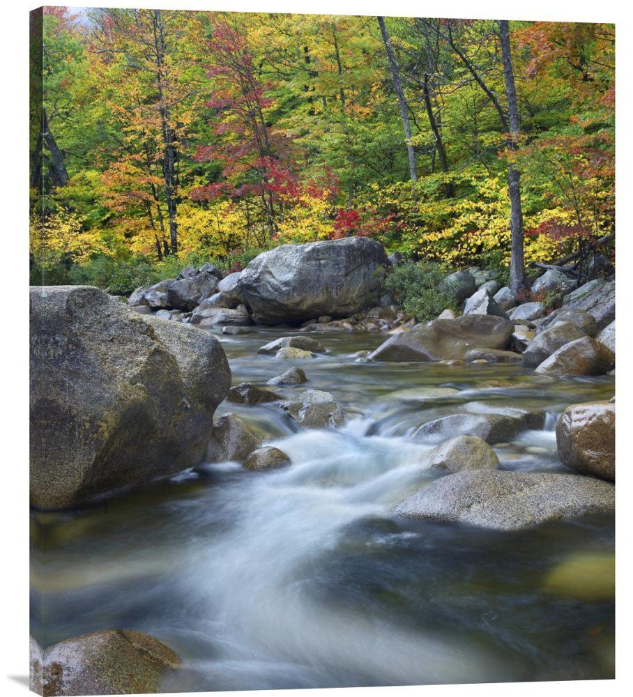 Swift River in Fall, White Mountains National Forest
