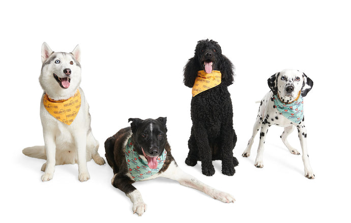 Meet the Portland Pet Food Pack